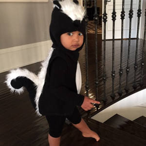 north-as-skunk